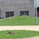 Plano general ingreso Estadio Bicentario Germán Becker, Temuco.
